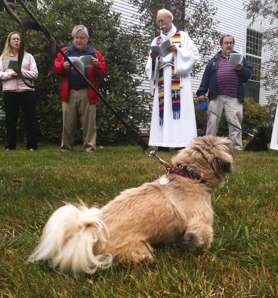 Blessing of the Animals_03